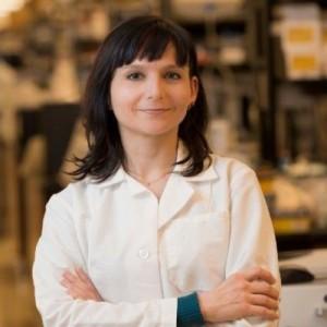 Elsa Suberbielle, DVM, PhD Research Scientist Gladstone Institute of Neurological Diseases San Francisco, CA 94158