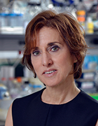 Jane E. Salmon, MD Division of Rheumatology Hospital for Special Surgery, and Weill Cornell Medical College, New York, NY