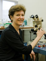 Dr. Margaret E. Rice, PhD Professor, Department of Neuroscience and Physiology Neurosurgery NYU Langone Medical Center