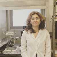Silvia Conde, PhD CEDOC, NOVA Medical School Faculdade de Ciências Médicas Universidade Nova de Lisboa Lisboa
