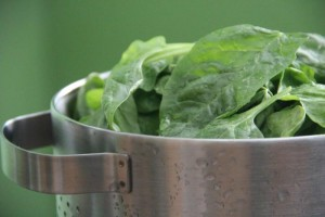 salad-cdc-image